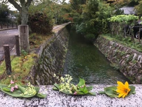 京都の旅\'19Ⅴ 京都裏千家訪問他_e0326953_18492673.jpg