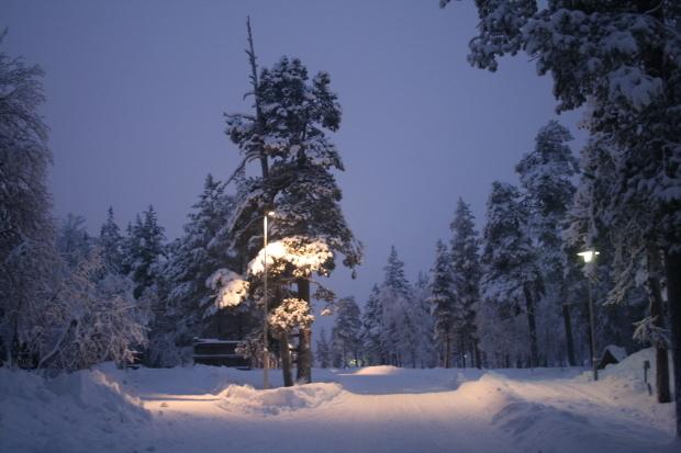 フィンランド、雪の中_d0193569_08012174.jpg