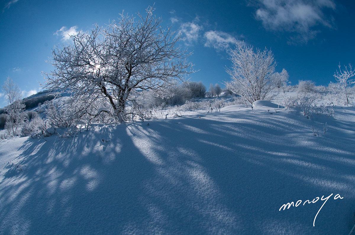 雪晴れの高原_c0085877_09342363.jpg