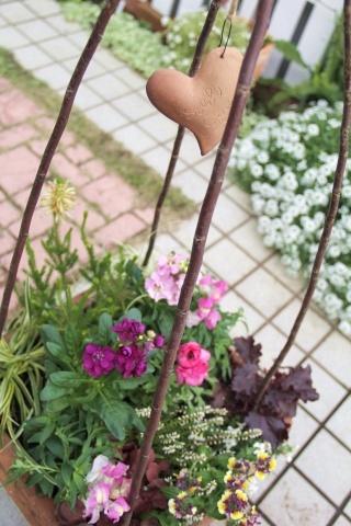 ◆やっと春の寄せ植え作りました!_e0154682_00364403.jpg