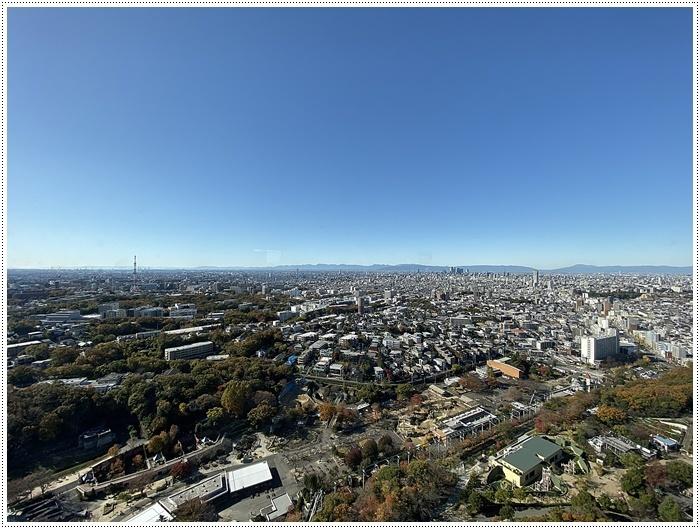 愛知県(名古屋周辺)でのお出かけ その5  東山動物園 (11月29日)やっぱりシャバーニに会わなくっちゃね_b0175688_00291170.jpg