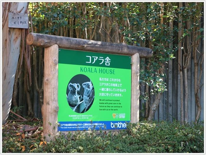 愛知県(名古屋周辺)でのお出かけ その5  東山動物園 (11月29日)やっぱりシャバーニに会わなくっちゃね_b0175688_00310690.jpg