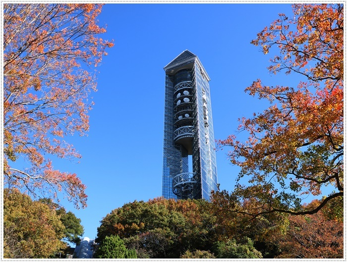 愛知県(名古屋周辺)でのお出かけ その5  東山動物園 (11月29日)やっぱりシャバーニに会わなくっちゃね_b0175688_00401199.jpg