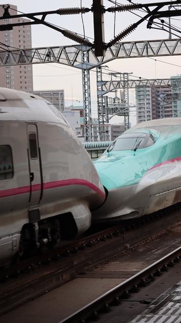 藤田八束の鉄道写真@今年最後の気仙沼出張、東北新幹線仙台駅の新幹線こまちとはやて、_d0181492_08335335.jpg