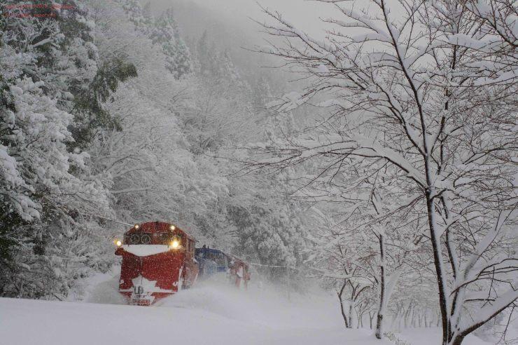 雪をはねのけて_d0309612_00233475.jpg