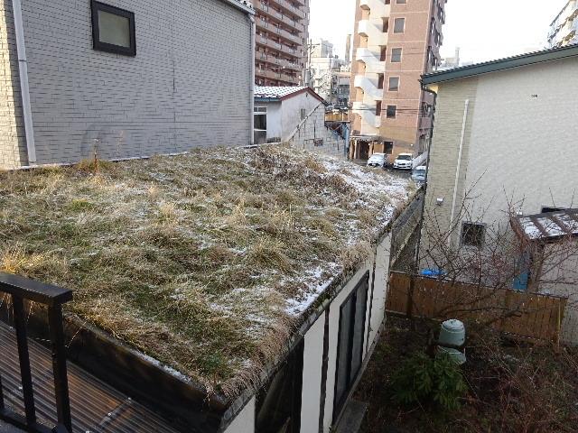 屋根緑化(草屋根)の今年一年を振り返る。_f0105112_04213480.jpg