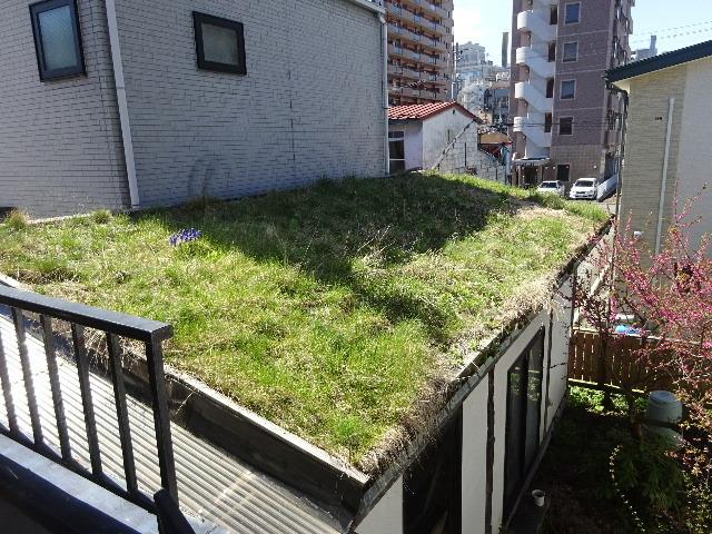 屋根緑化(草屋根)の今年一年を振り返る。_f0105112_04261713.jpg