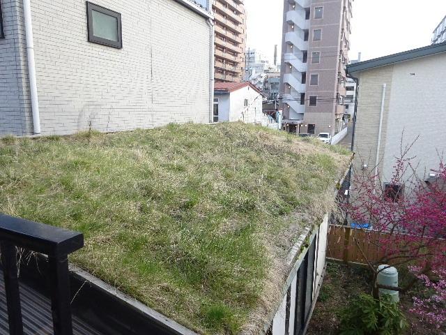 屋根緑化(草屋根)の今年一年を振り返る。_f0105112_04261828.jpg