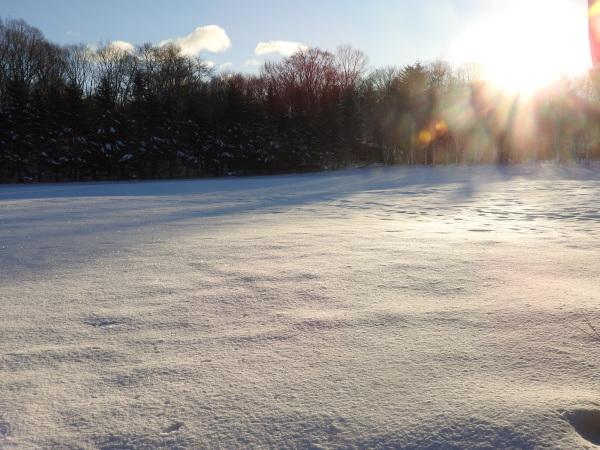 積雪約23cm!!道路は圧雪、ノーマルタイヤ危険(2019年12月28日)_b0174425_08393043.jpg