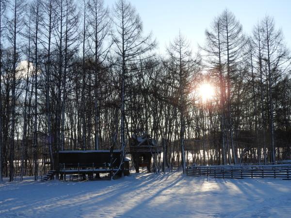 積雪約23cm!!道路は圧雪、ノーマルタイヤ危険(2019年12月28日)_b0174425_08395587.jpg