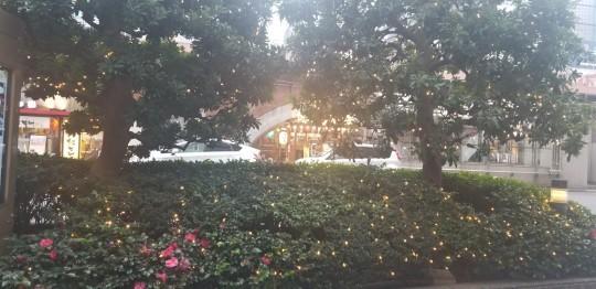 ♪いつまでもクリスマス★七海ひろきディナーショー_d0162225_18462244.jpg