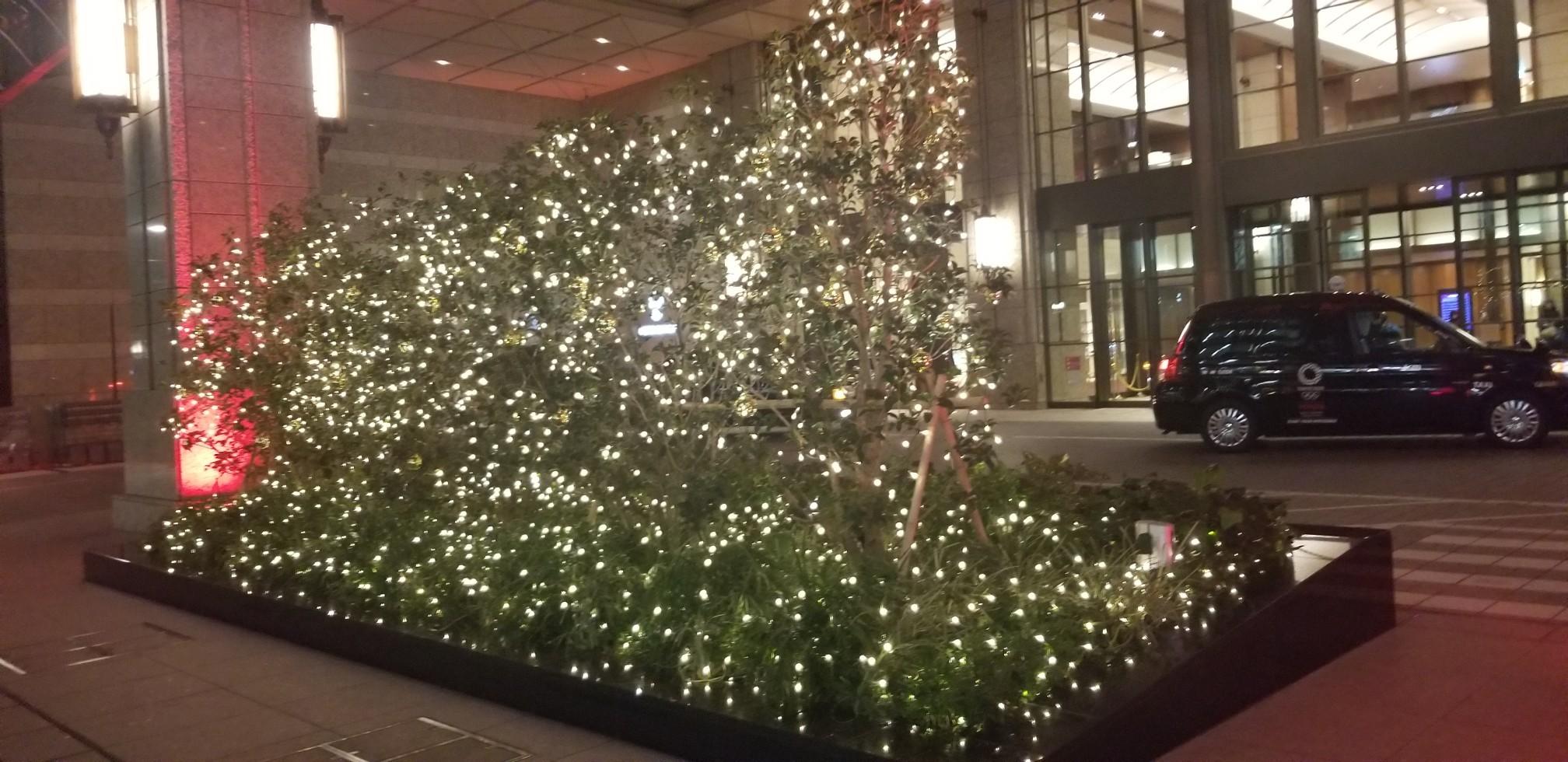 ♪いつまでもクリスマス★七海ひろきディナーショー_d0162225_18471130.jpg