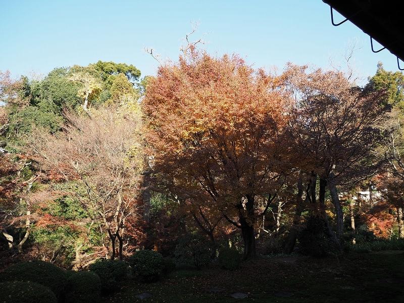 秋ではないけど_e0374932_08134359.jpg