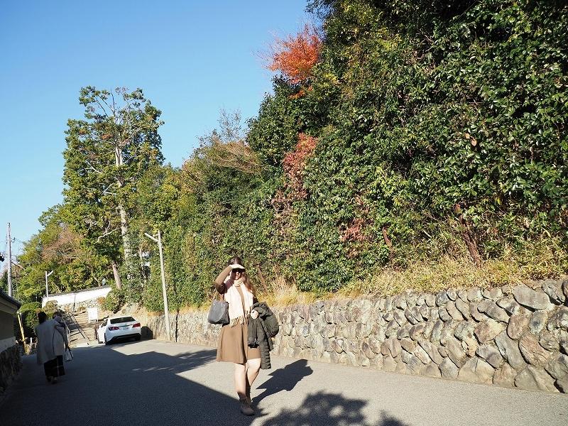 秋ではないけど_e0374932_08135805.jpg
