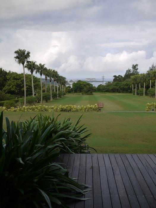沖縄冬至越えの旅6 オオゴマダラを見にゆく_e0359436_11465225.jpeg