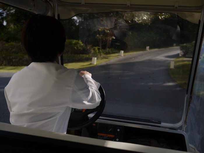 沖縄冬至越えの旅6 オオゴマダラを見にゆく_e0359436_11500001.jpeg