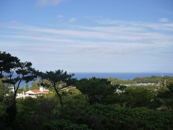 沖縄冬至越えの旅6 オオゴマダラを見にゆく_e0359436_11500399.jpeg