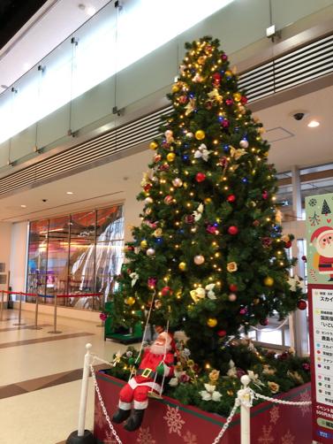 201912沖縄・石垣島旅行記#01~すぎのや@茨城空港のポテトが美味しい_f0207146_10181652.jpg