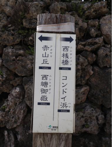 201912沖縄・石垣島旅行記#14~憧れの竹富島で水牛観光♪_f0207146_14502199.jpg