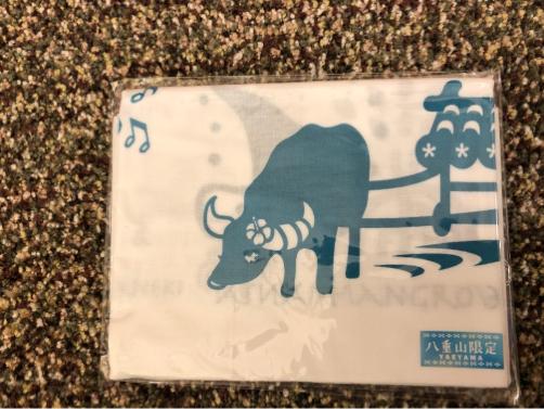 201912沖縄・石垣島旅行で買ったもの。_f0207146_15365668.jpg