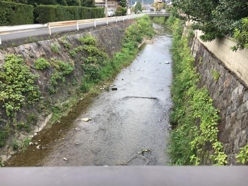 京都の旅\'19Ⅵ  京都秋の旅その1_e0326953_14465229.jpg