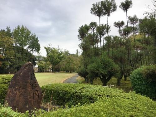 京都の旅\'19Ⅵ  京都秋の旅その1_e0326953_16481255.jpg