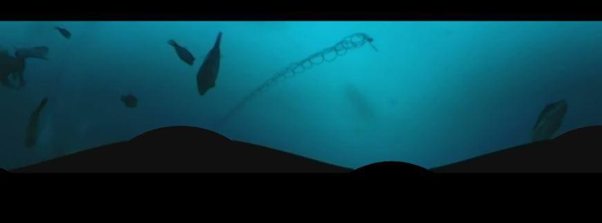 1228  第29回 人工魚礁研究会 波左間_b0075059_19575794.jpg