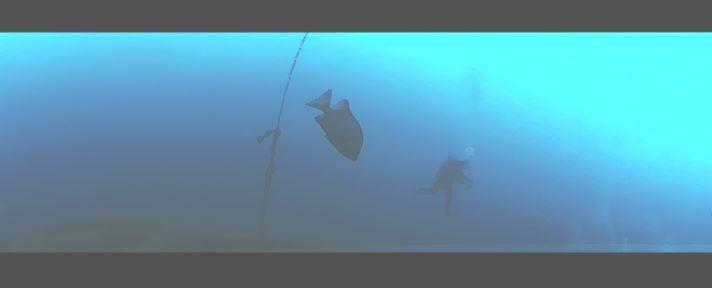 1228  第29回 人工魚礁研究会 波左間_b0075059_20012152.jpg