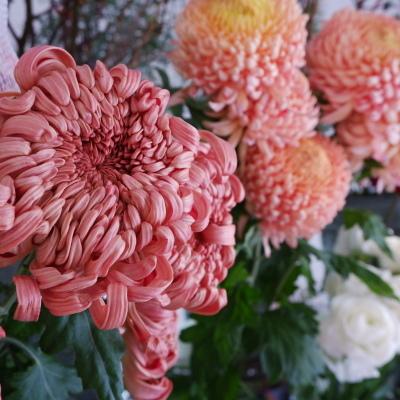 オークリーフ(今年最後のお店の花)_f0049672_07242635.jpg
