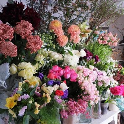 オークリーフ(今年最後のお店の花)_f0049672_07271626.jpg