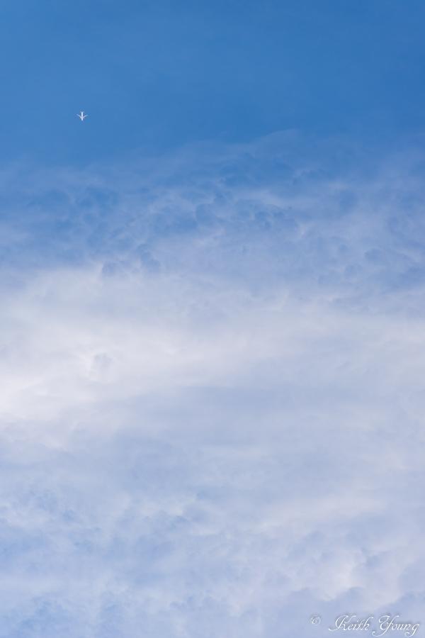 白い翼_e0338273_20104949.jpg