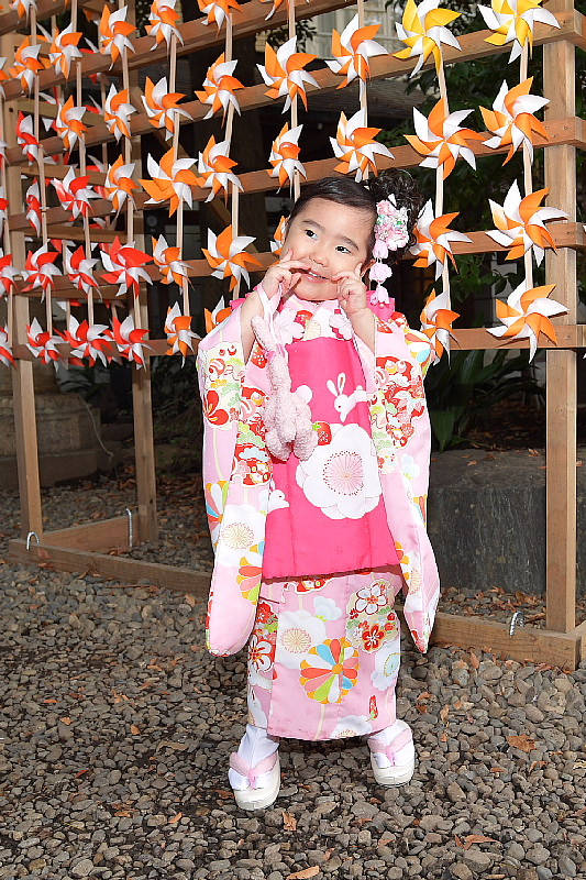 川越氷川神社で七五三_f0059882_7585512.jpg