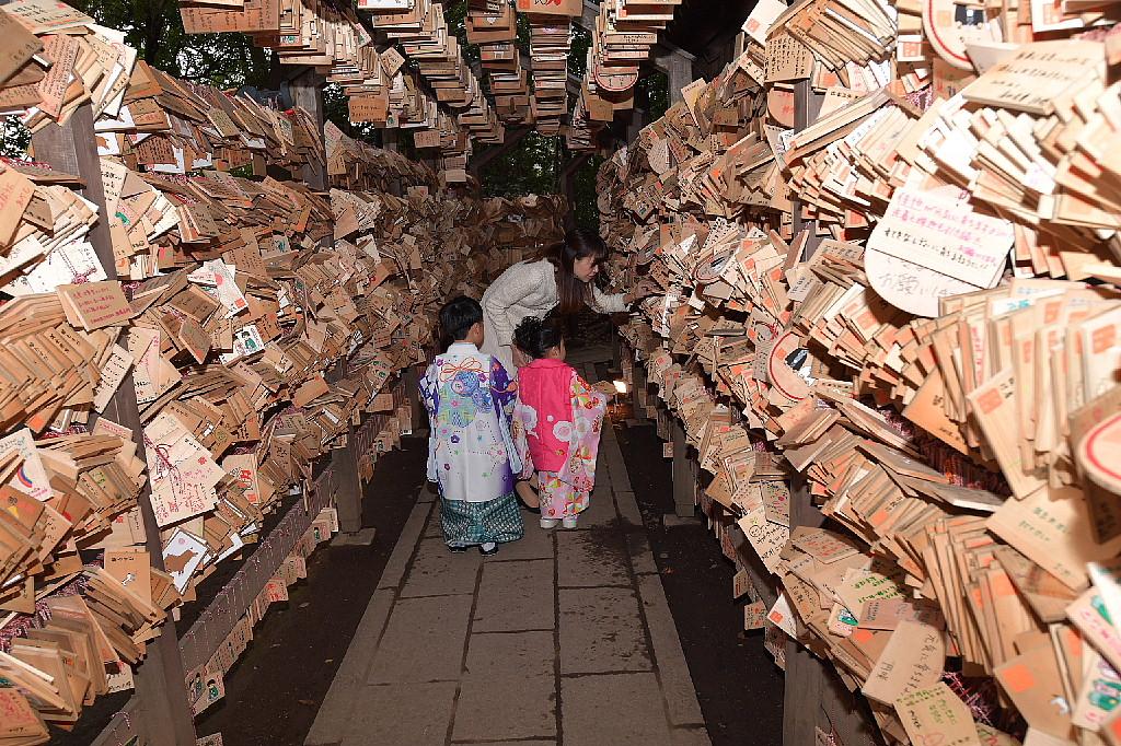 川越氷川神社で七五三_f0059882_802912.jpg