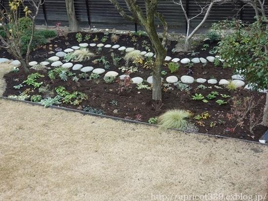 冬の庭しごと ガーデンシェッドのドアの取りつけと、マルチング作業の完了_c0293787_16532262.jpg