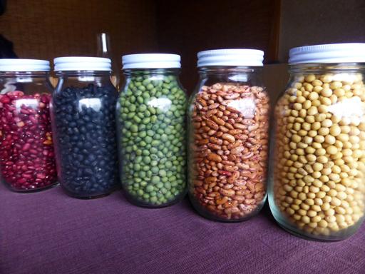 今年の豆の収穫_d0366590_15284475.jpg