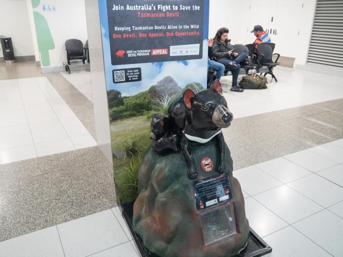 2019メルボルン・タスマニア・シドニーvol.6~飛行機でタスマニア島へ~_f0276498_23292598.jpg