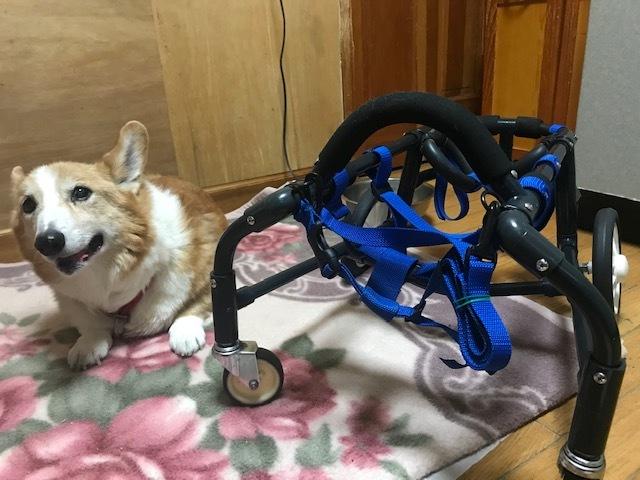 四輪車椅子_f0242002_19272774.jpg