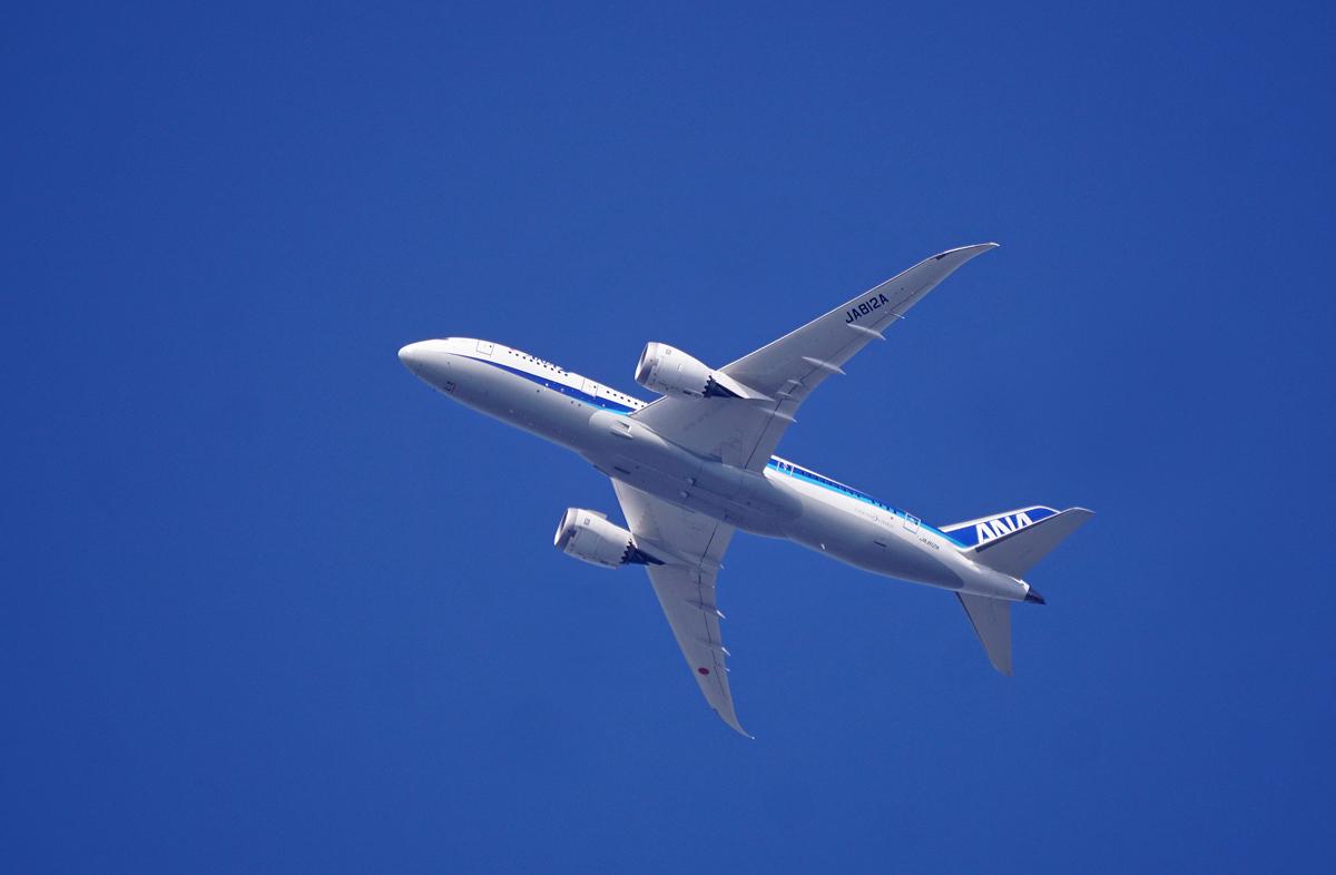 翼が欲しい。_b0044115_01062033.jpg