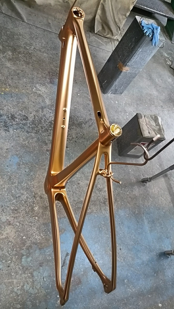 VeloBuild VB-R-16、塗装と組み付けが終わったのでうp。_d0130115_15544405.jpg
