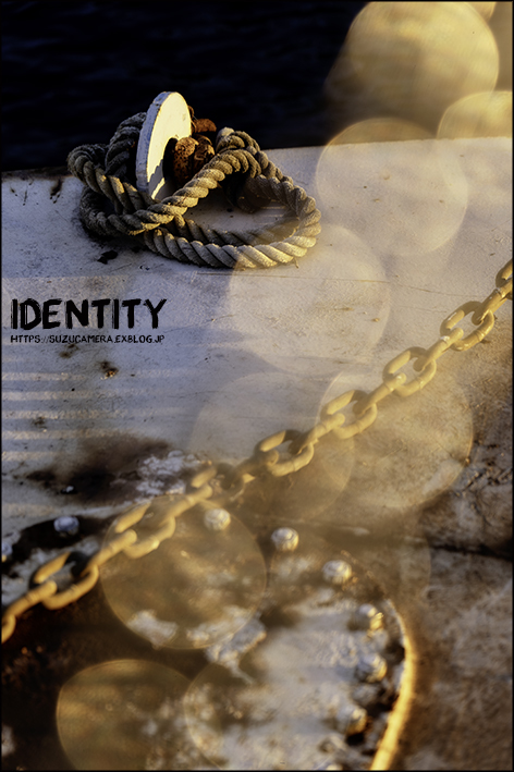 identity_f0100215_21083801.jpg