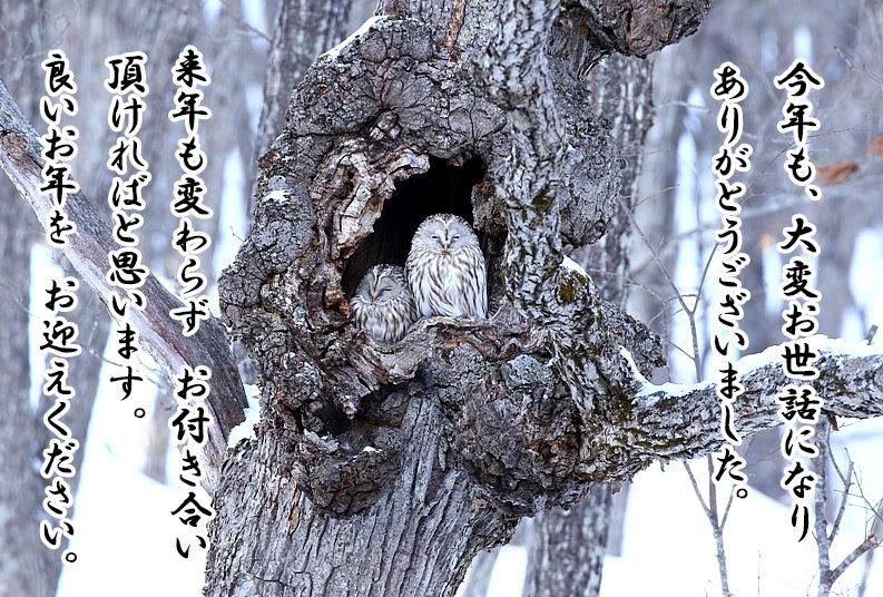 良いお年を お迎えください(*^^*)_e0218518_19441217.jpg