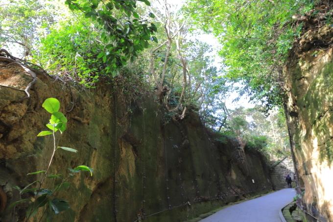 【猿島】横須賀 part 1_f0348831_23133862.jpg