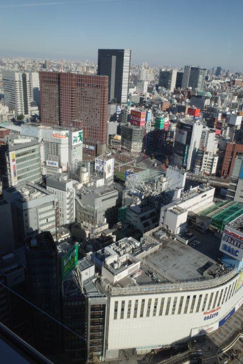 高層ビルから、都心を眺めて_e0080345_17051386.jpg