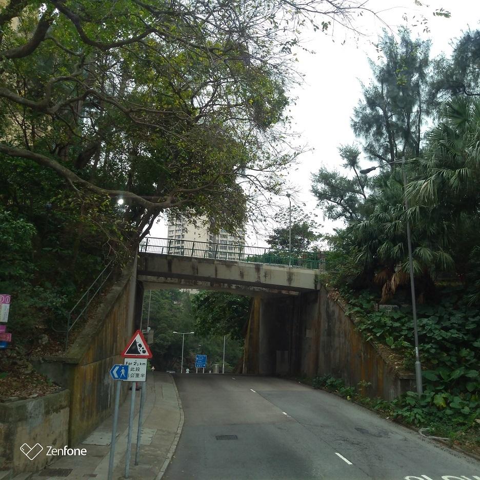 香港のハイキングコース~ウィルソントレイル_e0401354_12502708.jpg