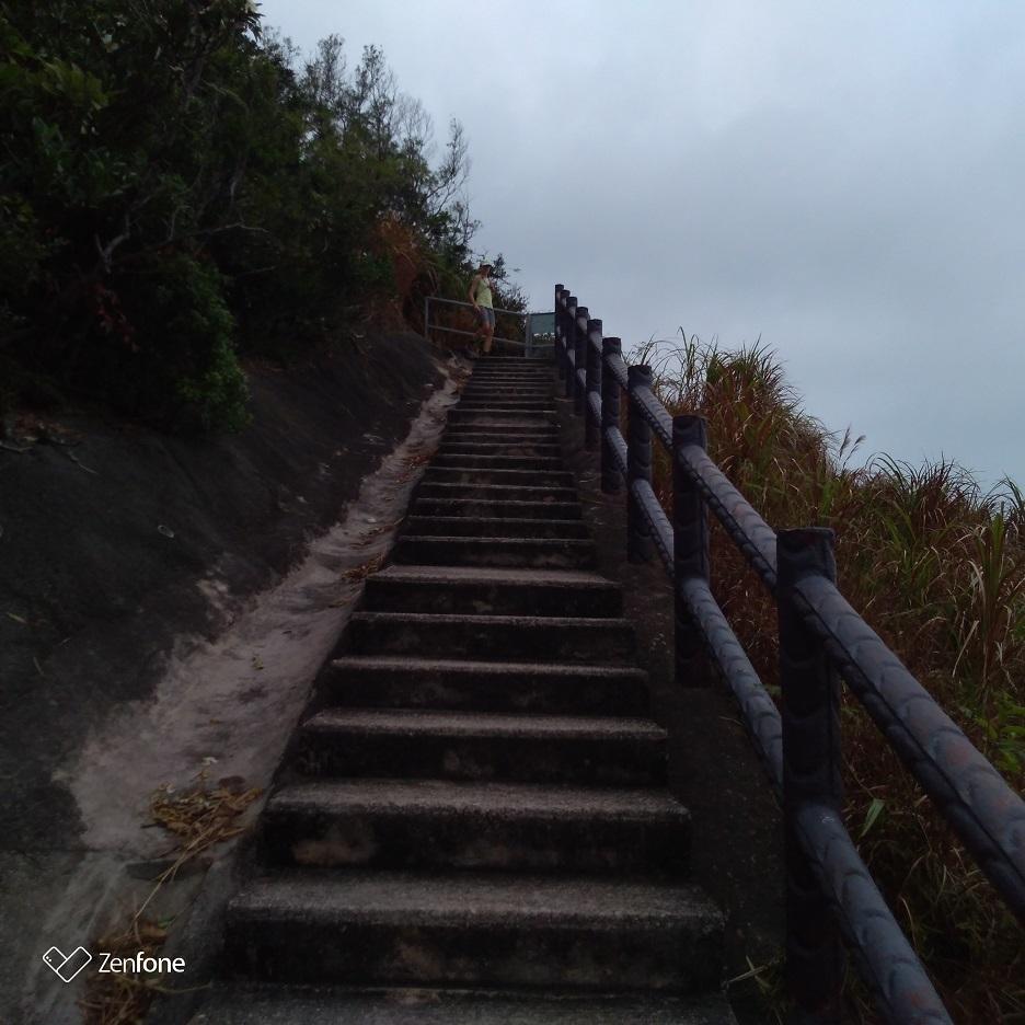 香港のハイキングコース~ウィルソントレイル_e0401354_12545381.jpg