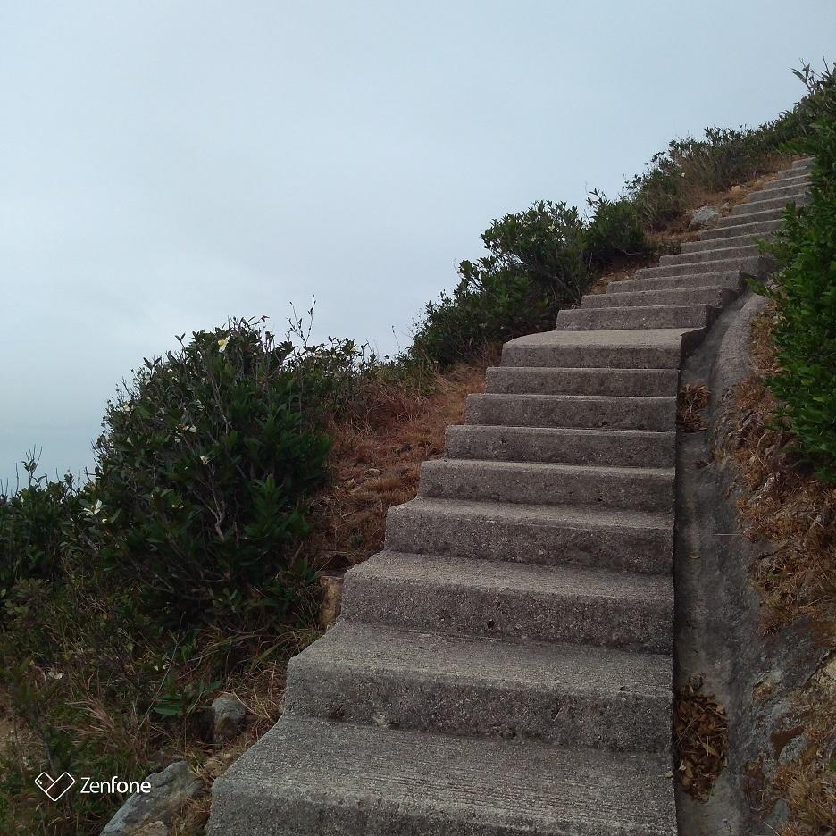 香港のハイキングコース~ウィルソントレイル_e0401354_12570361.jpg