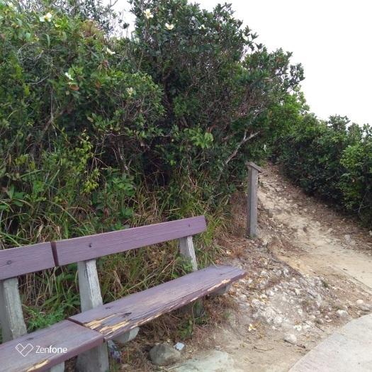 香港のハイキングコース~ウィルソントレイル_e0401354_12571531.jpg