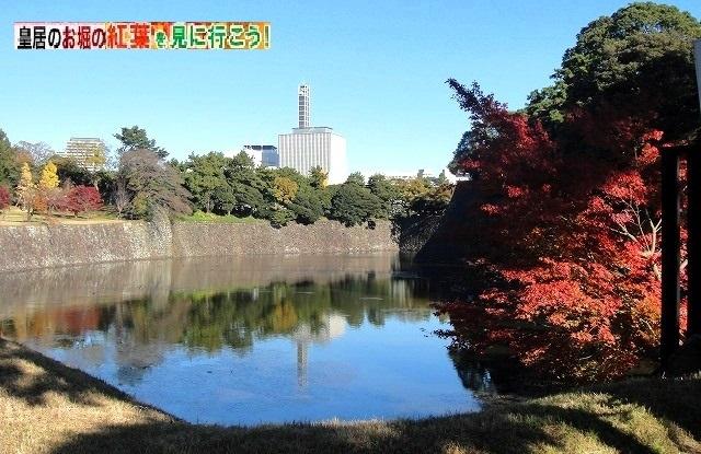<2020年元日>令和初のお正月を迎えて新年ご挨拶(新たなる日本の未来に向けて)_c0119160_10523091.jpg