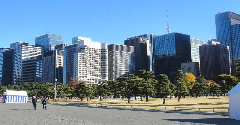 <2020年元日>令和初のお正月を迎えて新年ご挨拶(新たなる日本の未来に向けて)_c0119160_11261709.jpg