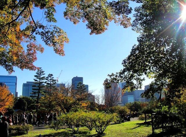 <2020年元日>令和初のお正月を迎えて新年ご挨拶(新たなる日本の未来に向けて)_c0119160_12172284.jpg